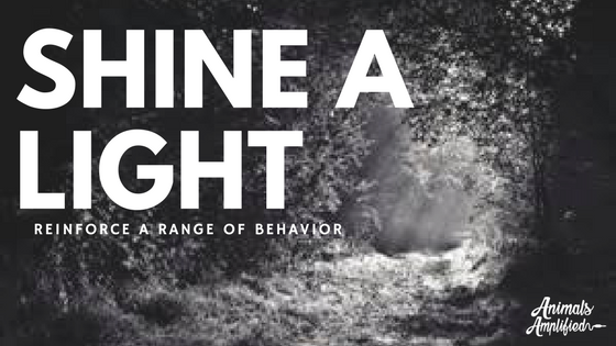 Shine a Light: Reinforce a Range of Behavior