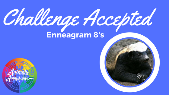 Challenge Accepted-More on Ennegram 8