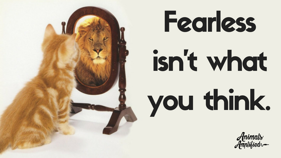 Fearless isn't what you think.