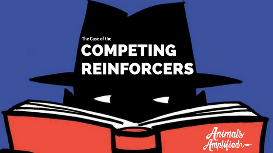 The Case of the Competing Reinforcers