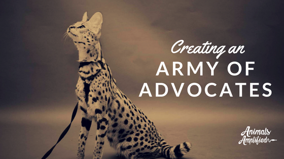 Creating an army of advocates