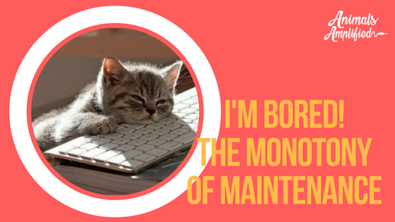 I'm bored!  The monotony of maintenance.