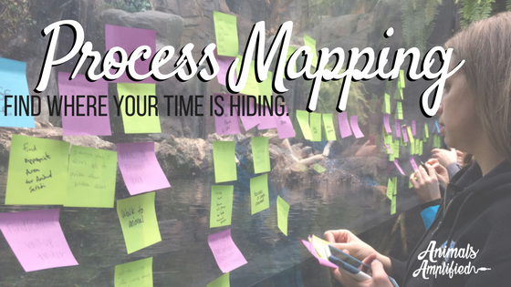 Process Mapping: Find where your time is hiding