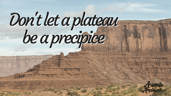 Don't let a plateau become a precipice