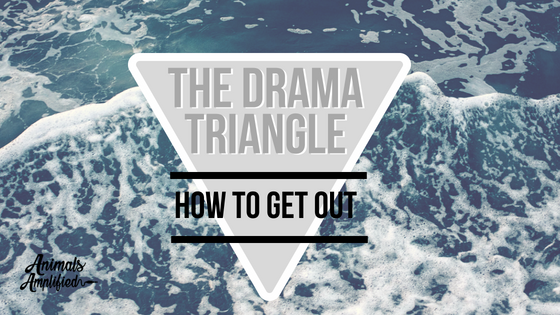 The Drama Triangle: How to get out
