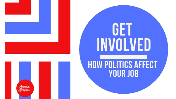 How can your vote affect your job?