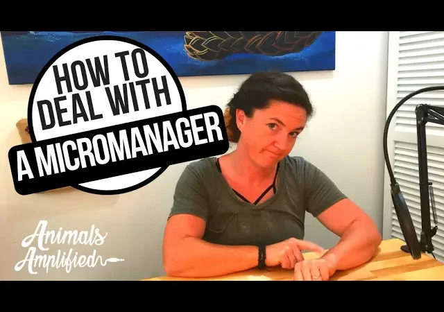 How to Deal with A Micromanager