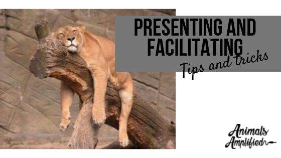 Presenting and Facilitating tips